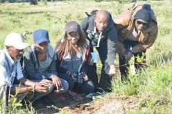 Hunt for wisdom in iSimangaliso