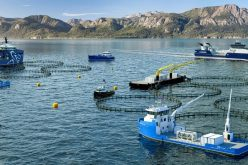 Could aquaculture satisfy world demand for seafood?