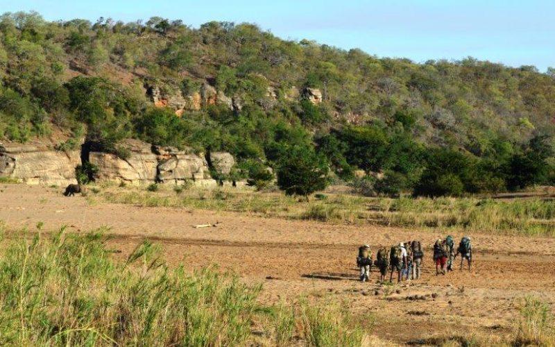 Coal mining plans threaten wilderness area