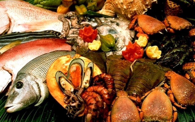 "Fish farming fervour gets ""dished"""