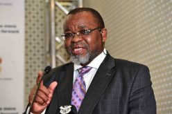 Wild swimmers and Gwede Mantashe converge on Xolobeni