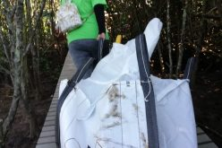 Volunteers bag tons in Beachwood cleanup