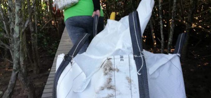 Volunteers bag tons in Beachwood cleanup