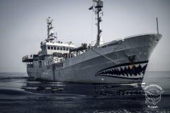 Sea Shepherd skipper on film fest bill