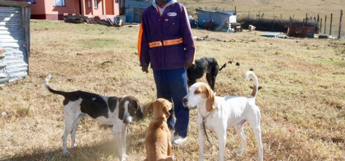 Have your say about hunting with dogs