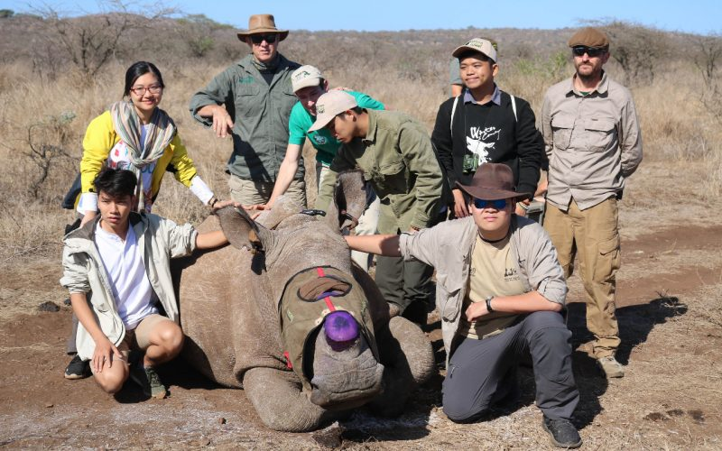Vietnamese youth pledge support for war on poaching