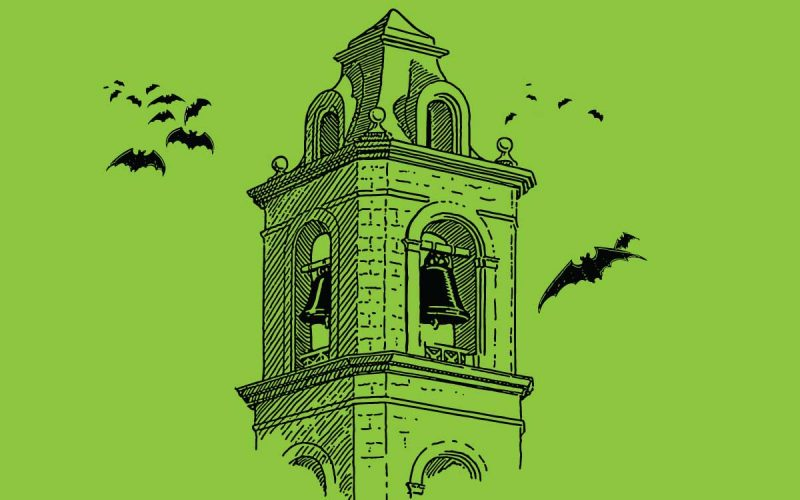 Bats in the belfry: <br> Time for a rethink on a troubling harvest