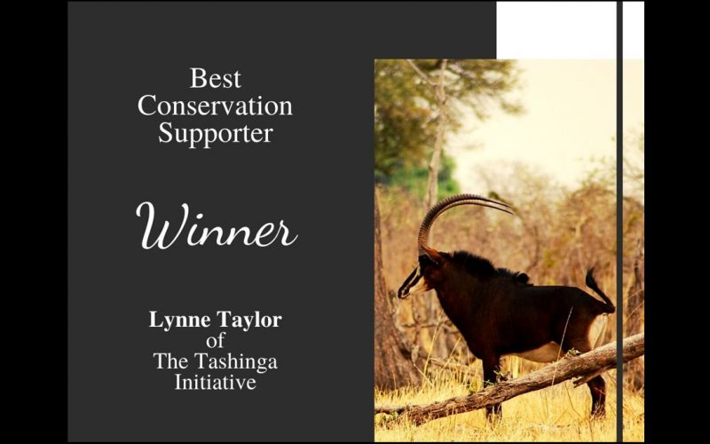 2020 Rhino Conservation award winner